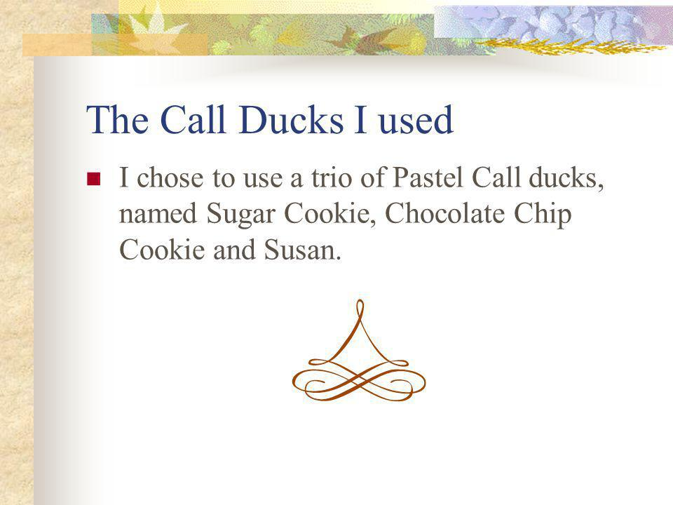 The Call Ducks I used I chose to use a trio of Pastel Call ducks, named Sugar Cookie, Chocolate Chip Cookie and Susan.