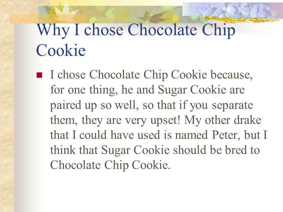 Why I chose Chocolate Chip Cookie I chose Chocolate Chip Cookie because, for one thing, he and Sugar Cookie are paired up so well, so that if you separate them, they are very upset.