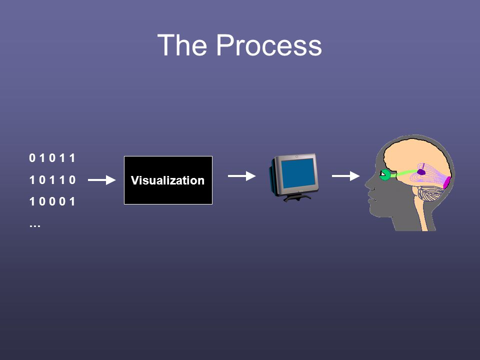 The Process 0 1 0 1 1 1 0 1 1 0 1 0 0 0 1 … Visualization