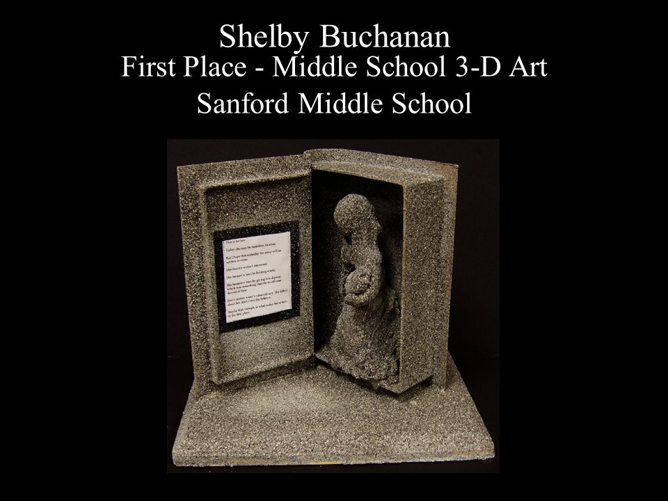 Shelby Buchanan First Place - Middle School 3-D Art Sanford Middle School