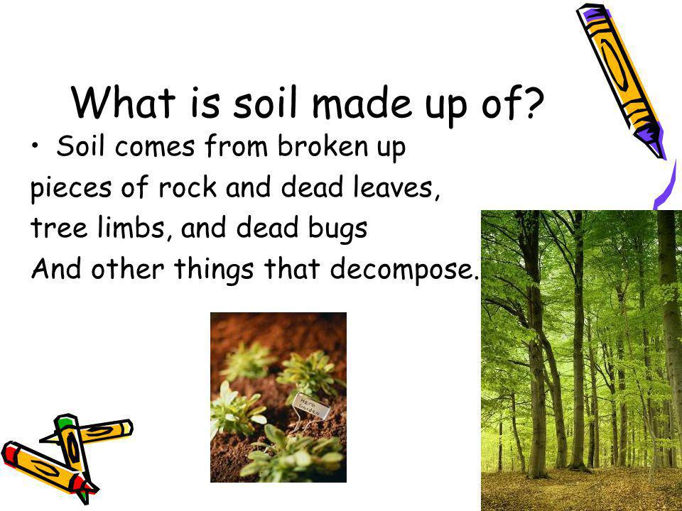 What is soil made up of? Soil comes from broken up pieces of rock and dead leaves, tree limbs, and dead bugs And other things that decompose.