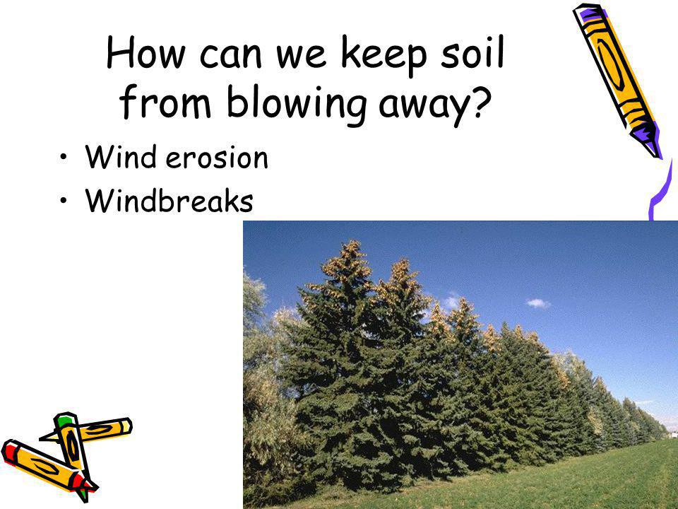 How can we keep soil from blowing away Wind erosion Windbreaks