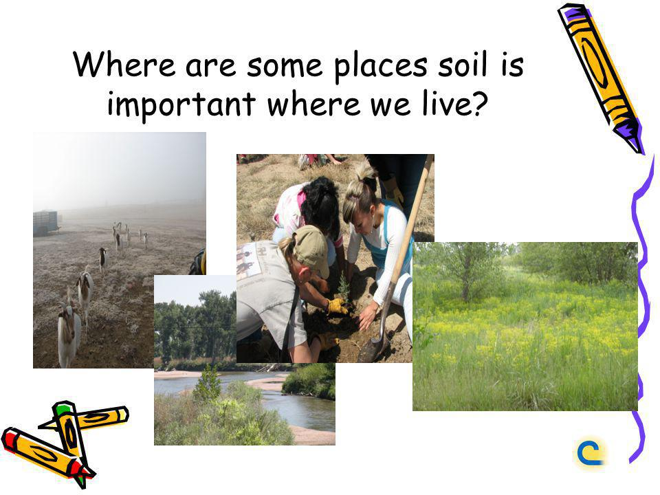Where are some places soil is important where we live?