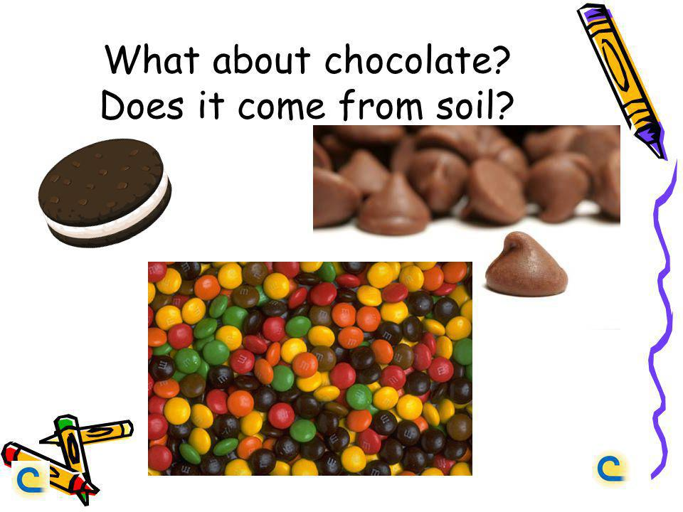 What about chocolate? Does it come from soil?