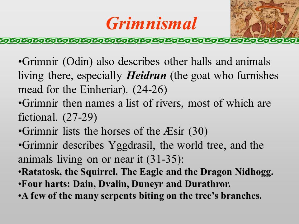 Grimnismal Grimnir (Odin) also describes other halls and animals living there, especially Heidrun (the goat who furnishes mead for the Einheriar).