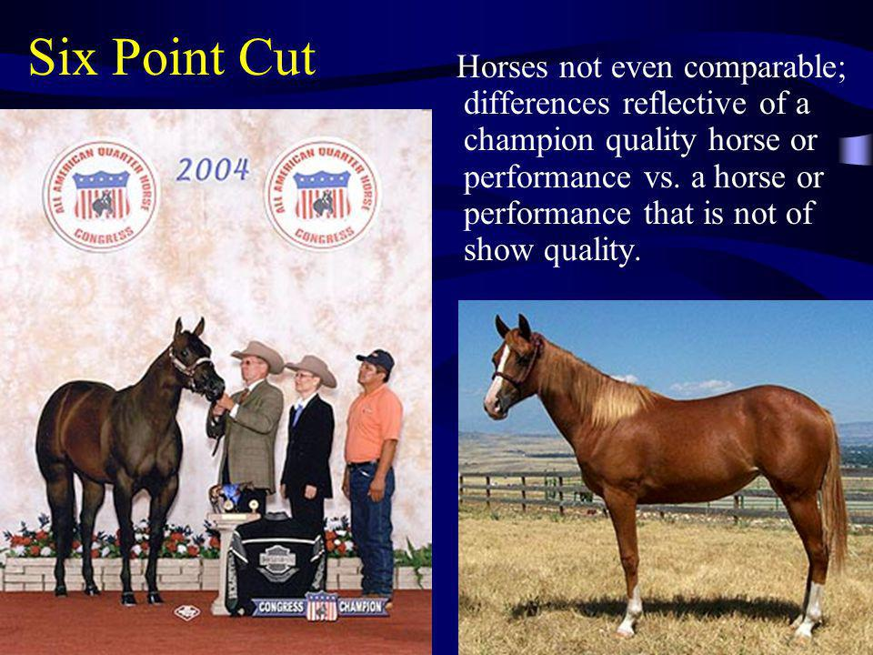 Six Point Cut Horses not even comparable; differences reflective of a champion quality horse or performance vs. a horse or performance that is not of