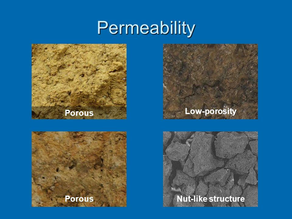 Permeability Nut-like structureLow-porosity Porous
