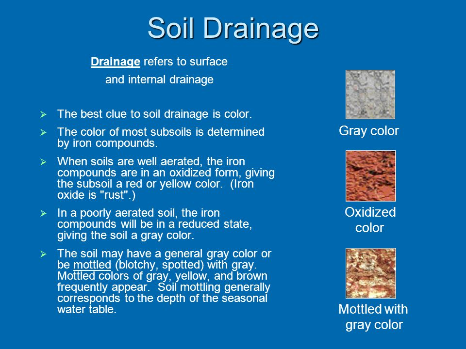 Soil Drainage Drainage refers to surface and internal drainage The best clue to soil drainage is color.