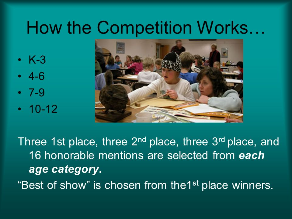 How the Competition Works… K-3 4-6 7-9 10-12 Three 1st place, three 2 nd place, three 3 rd place, and 16 honorable mentions are selected from each age category.