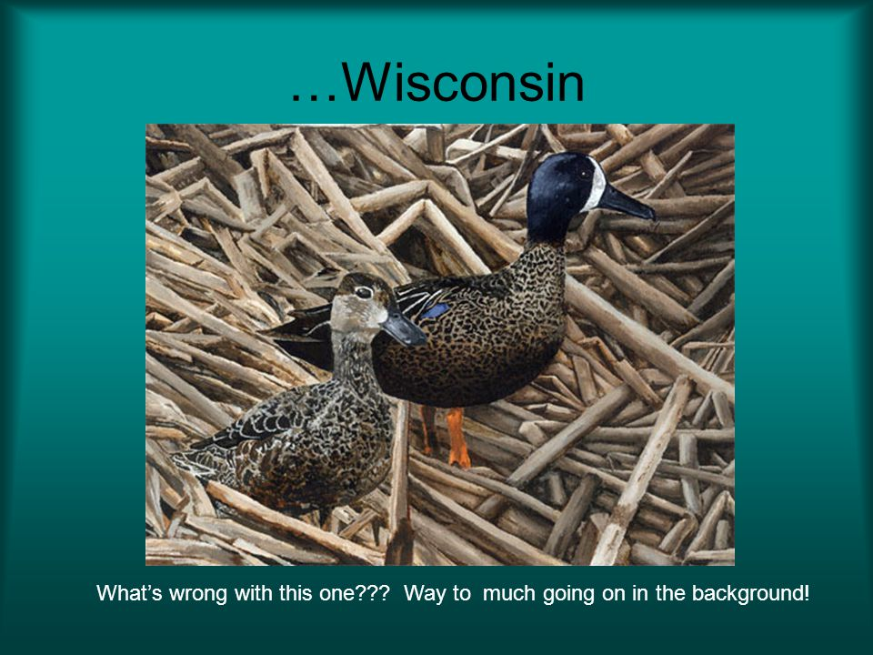 …Wisconsin Whats wrong with this one??? Way to much going on in the background!