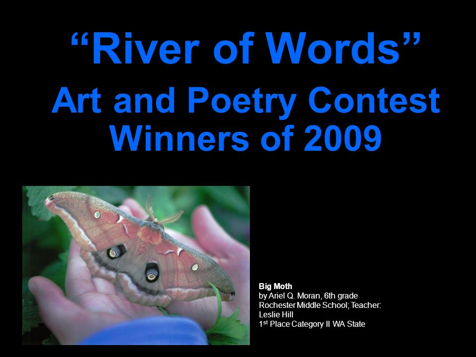 River of Words Art and Poetry Contest Winners of 2009 Big Moth by Ariel Q.