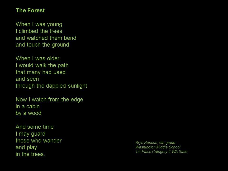 The Forest When I was young I climbed the trees and watched them bend and touch the ground When I was older, I would walk the path that many had used and seen through the dappled sunlight Now I watch from the edge in a cabin by a wood And some time I may guard those who wander and play in the trees.