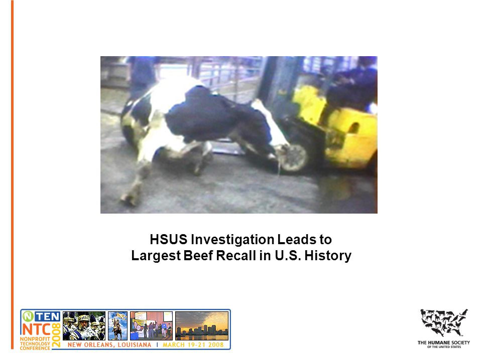 HSUS Investigation Leads to Largest Beef Recall in U.S. History