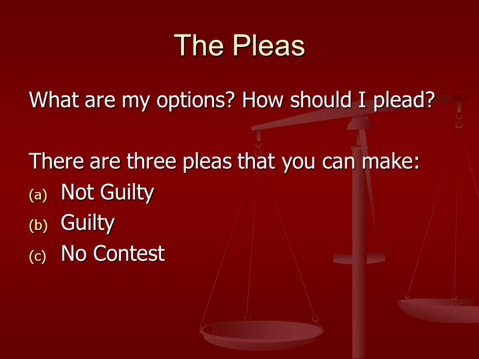 The Pleas What are my options. How should I plead.