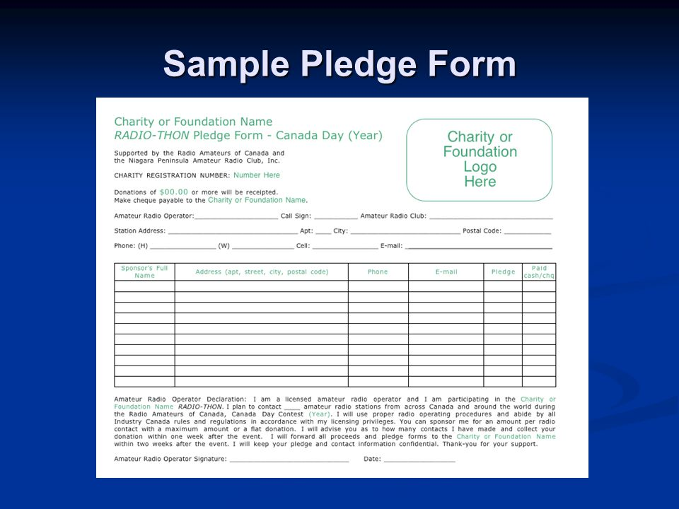 Sample Pledge Form
