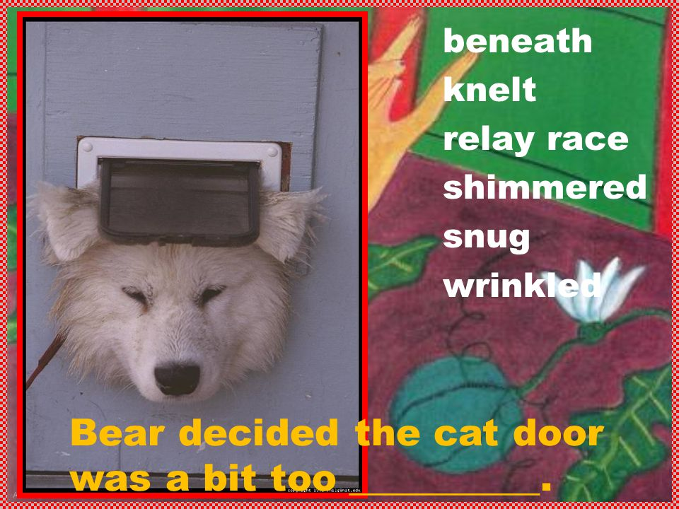 Anne Miller beneath knelt relay race shimmered snug wrinkled Bear decided the cat door was a bit too __________.