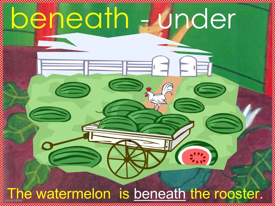 Anne Miller beneath The watermelon is beneath the rooster. - under