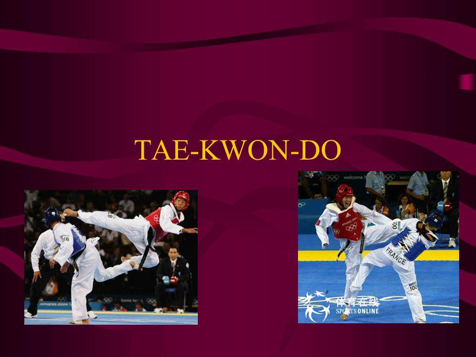 Techniques Front Kick (ap chagi)right Back Kick (dwi chagi) & Side Kick (yeop chagi)downhttp://ww w.youtube.com/watch ?v=RxHcmW9g7pE& feature=related
