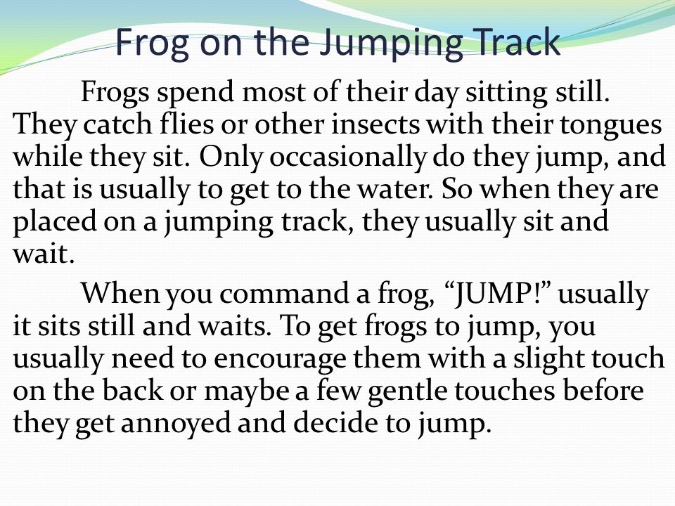 Frog on the Jumping Track Frogs spend most of their day sitting still. They catch flies or other insects with their tongues while they sit. Only occas