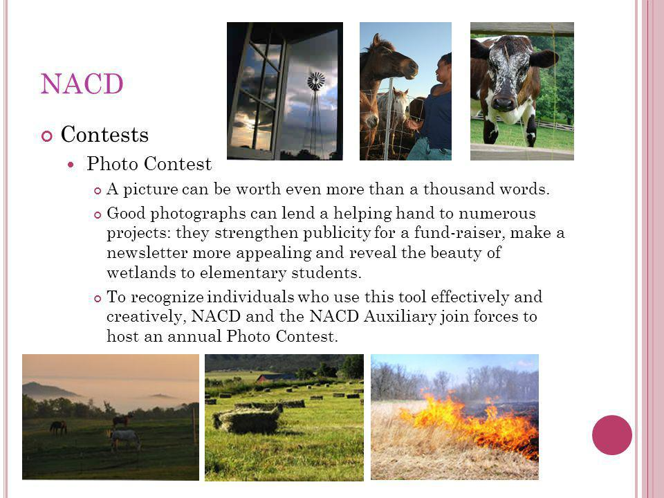 NACD Contests Photo Contest A picture can be worth even more than a thousand words.