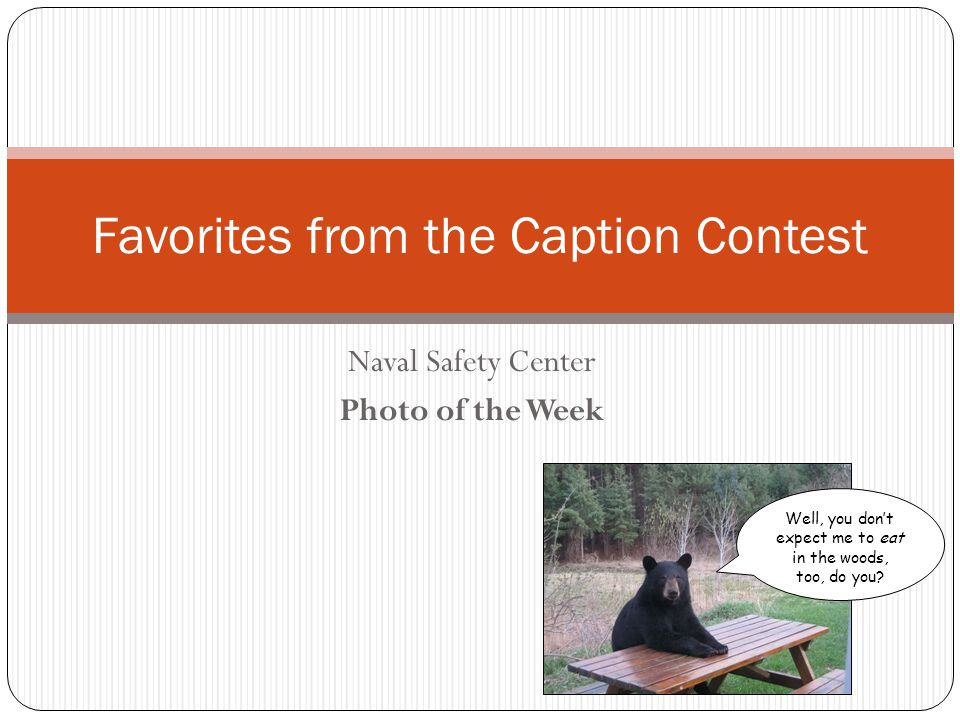 Naval Safety Center Photo of the Week Favorites from the Caption Contest Well, you dont expect me to eat in the woods, too, do you?