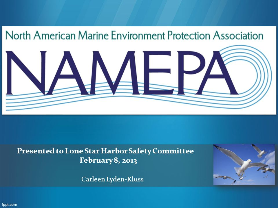 Presented to Lone Star Harbor Safety Committee February 8, 2013 Carleen Lyden-Kluss