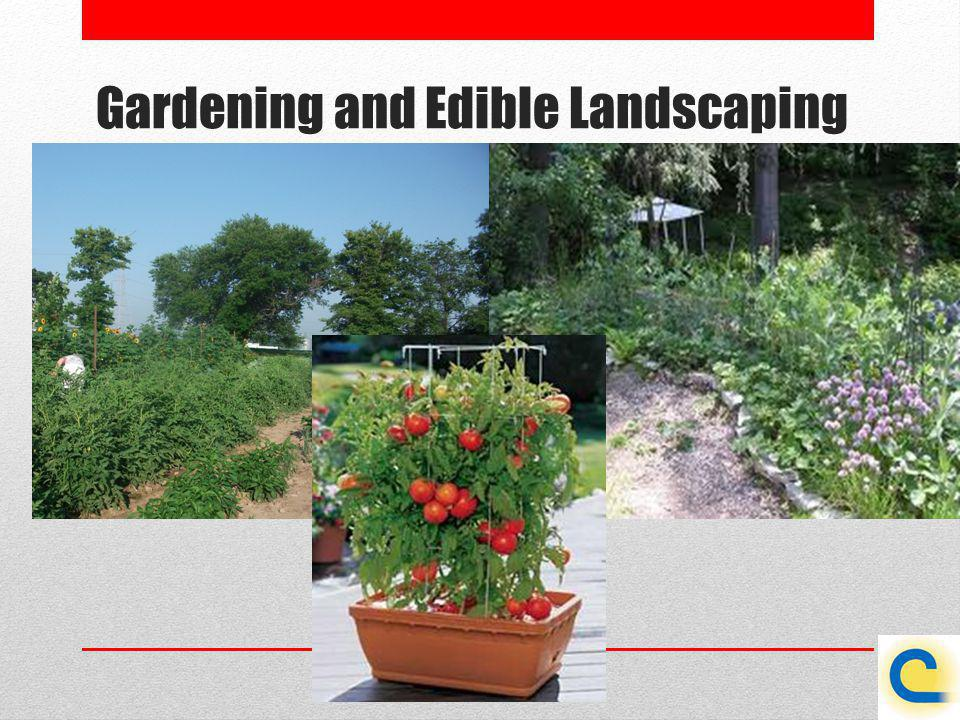 Gardening and Edible Landscaping