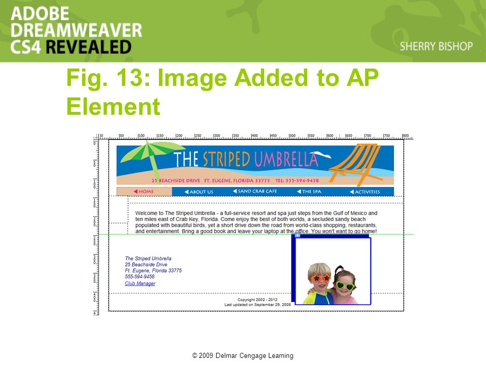 © 2009 Delmar Cengage Learning Fig. 13: Image Added to AP Element