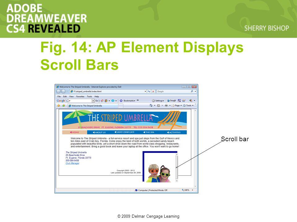 © 2009 Delmar Cengage Learning Fig. 14: AP Element Displays Scroll Bars Scroll bar