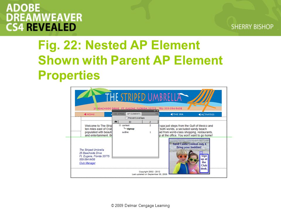 © 2009 Delmar Cengage Learning Fig. 22: Nested AP Element Shown with Parent AP Element Properties