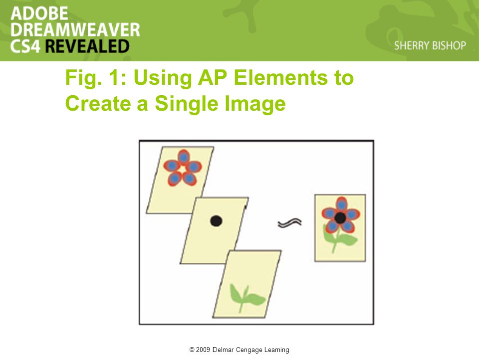 © 2009 Delmar Cengage Learning Fig. 1: Using AP Elements to Create a Single Image
