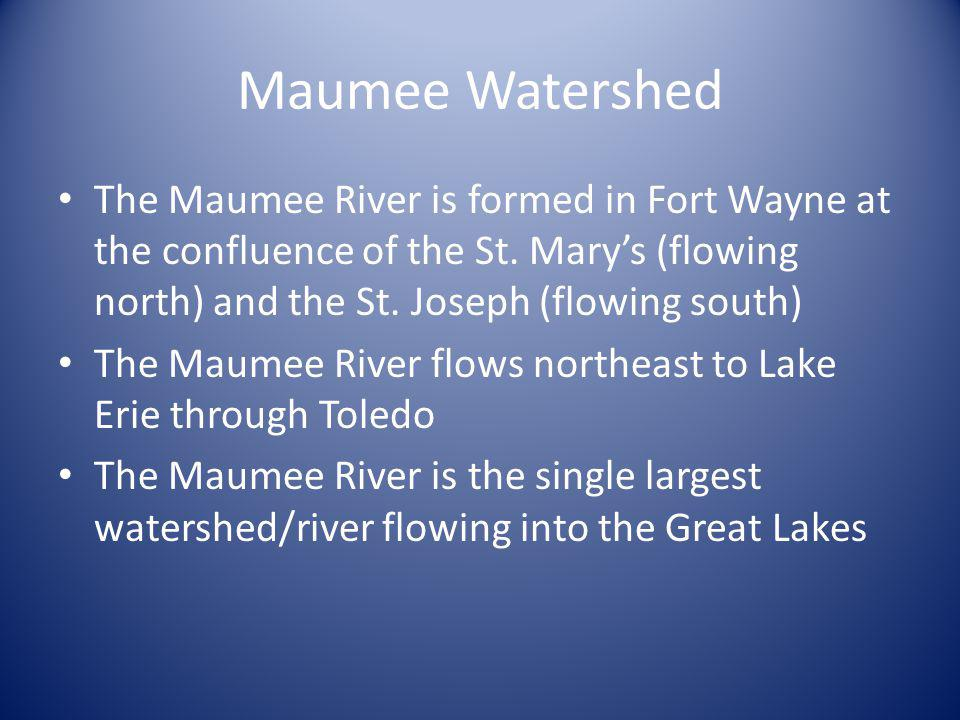 Maumee Watershed The Maumee River is formed in Fort Wayne at the confluence of the St. Marys (flowing north) and the St. Joseph (flowing south) The Ma