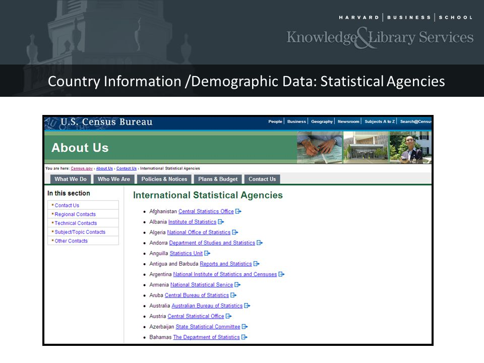 Country Information /Demographic Data: Statistical Agencies