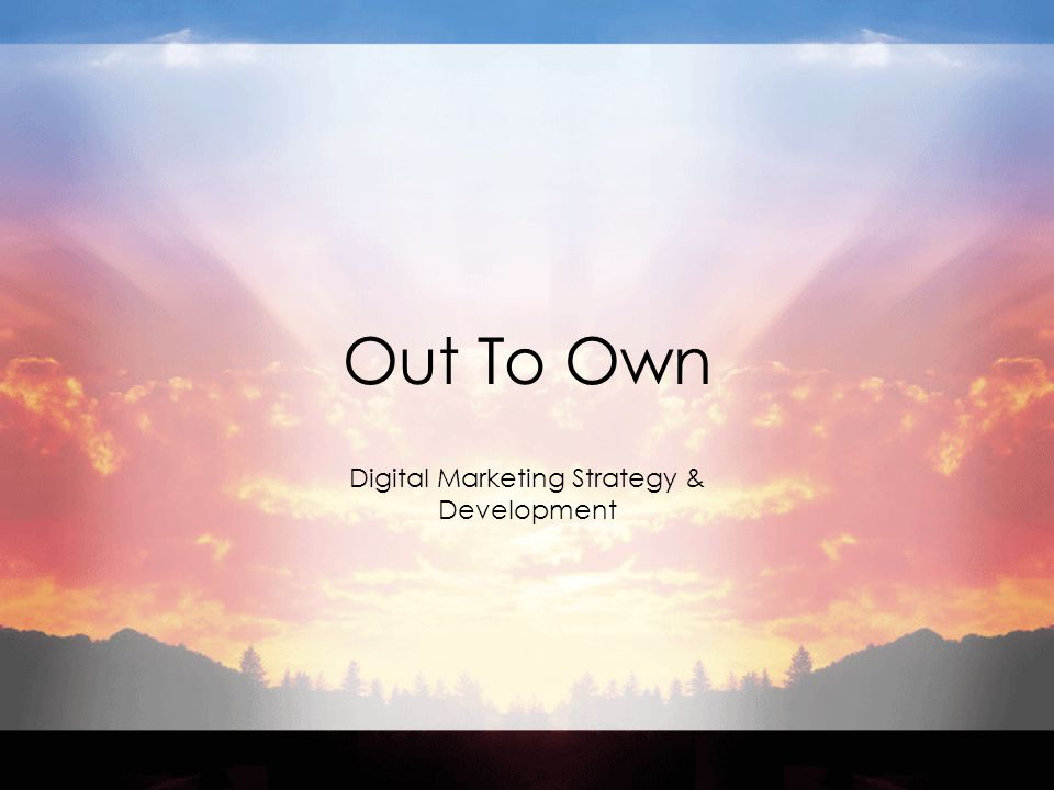 Out To Own Digital Marketing Strategy & Development