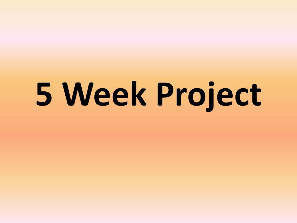 5 Week Project