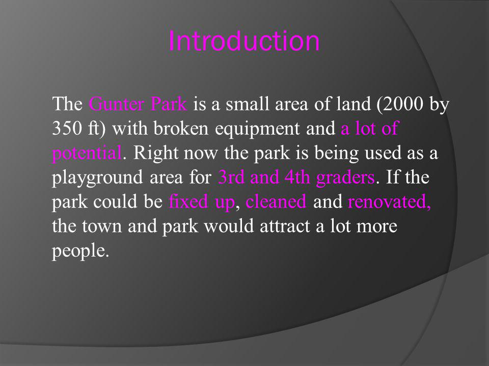 The Gunter Park is a small area of land (2000 by 350 ft) with broken equipment and a lot of potential.