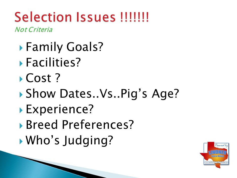 Selection Issues !!!!!!! Not Criteria Family Goals? Facilities? Cost ? Show Dates..Vs..Pigs Age? Experience? Breed Preferences? Whos Judging?