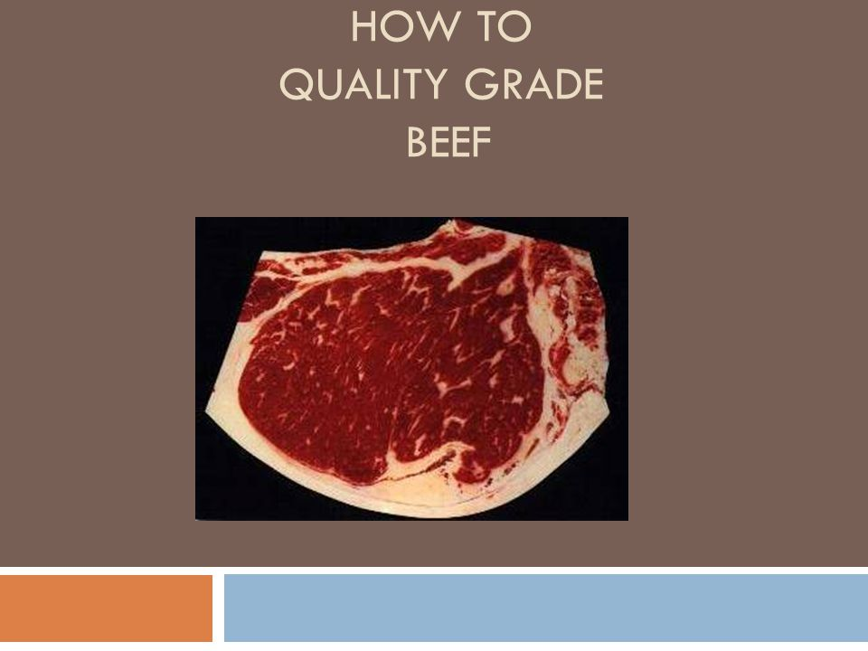 Quality Grades of Beef Meat is graded based on it quality and the amount of red meat a carcass yields.