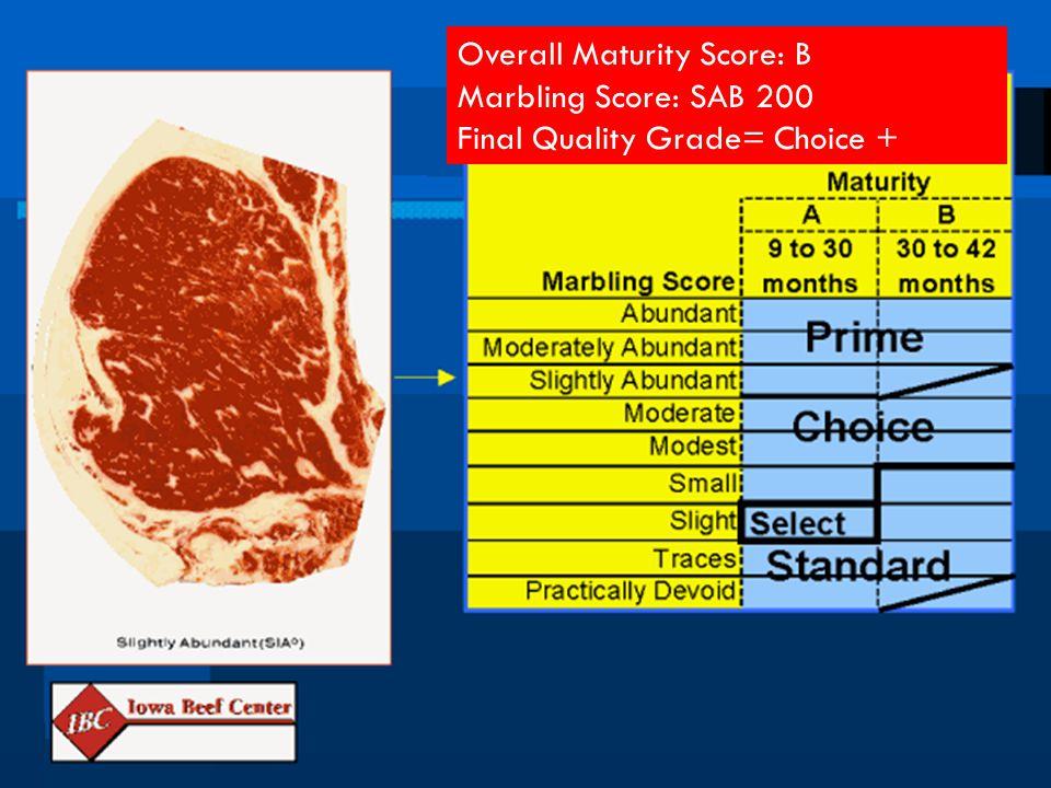 Overall Maturity Score: B Marbling Score: SAB 200 Final Quality Grade= Choice +