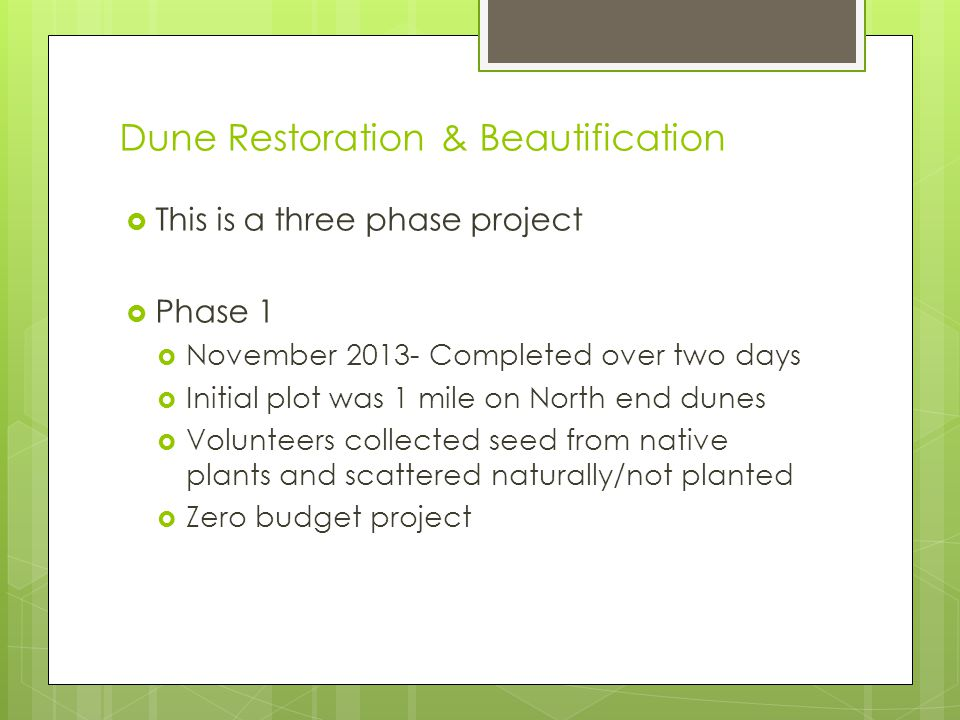 Dune Restoration & Beautification This is a three phase project Phase 1 November 2013- Completed over two days Initial plot was 1 mile on North end du