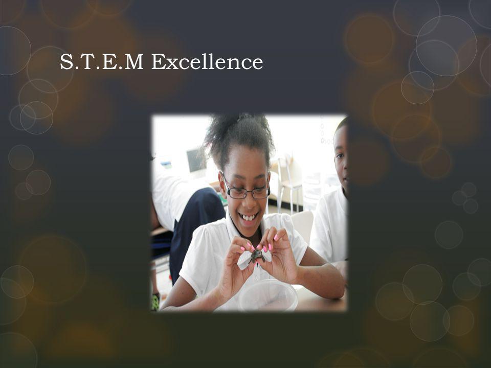 S.T.E.M Excellence