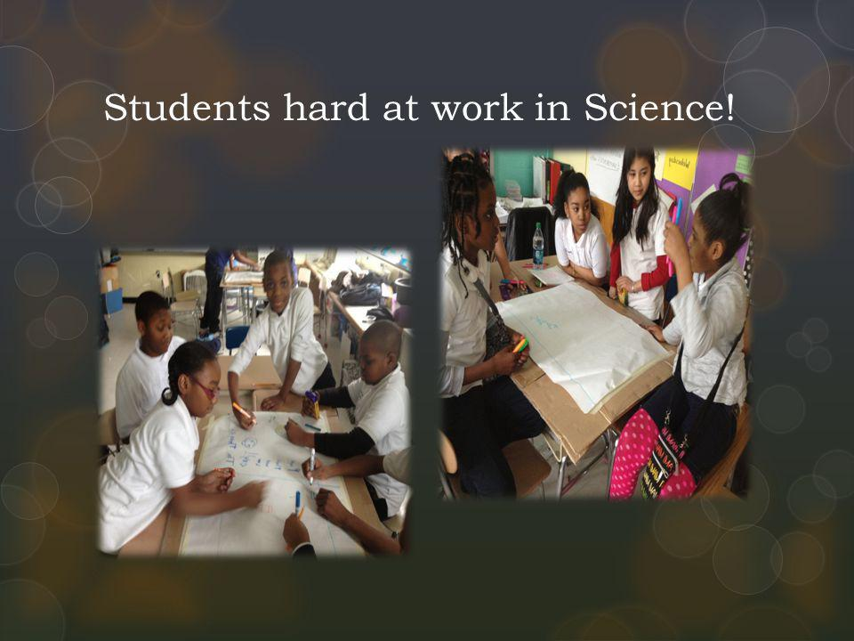 Students hard at work in Science!
