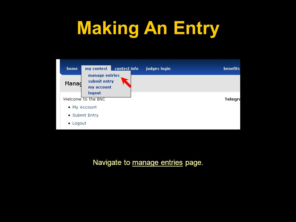 Making An Entry Navigate to manage entries page.
