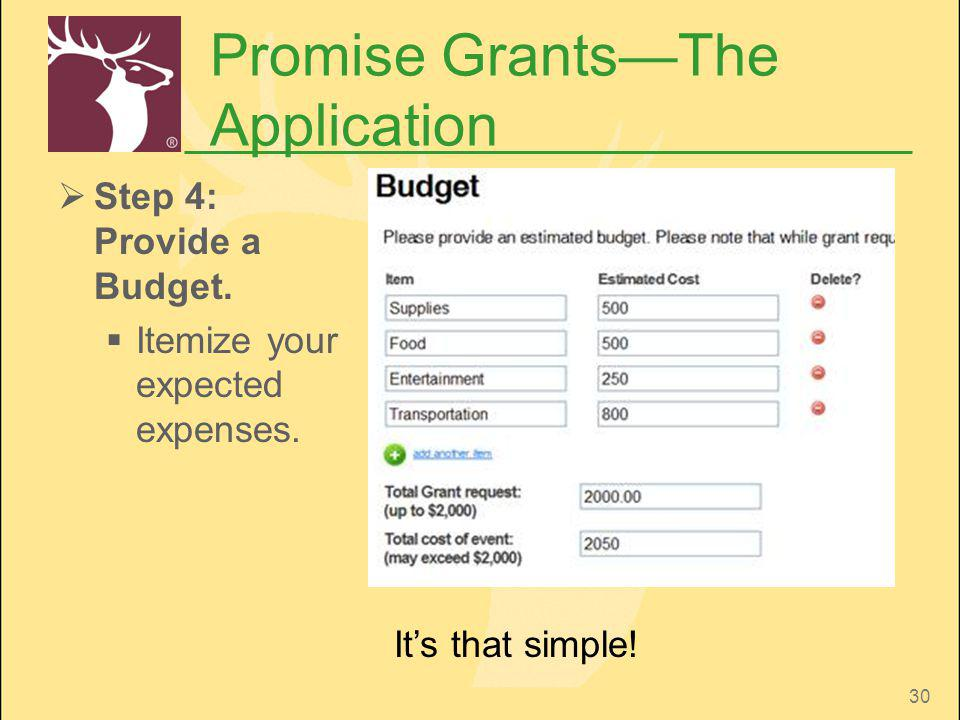 30 Promise GrantsThe Application Step 4: Provide a Budget. Itemize your expected expenses. Its that simple!