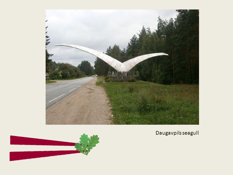 Daugavpils seagull