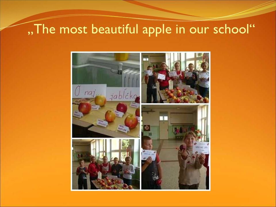 The most beautiful apple in our school