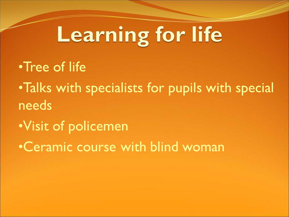 Tree of life Talks with specialists for pupils with special needs Visit of policemen Ceramic course with blind woman