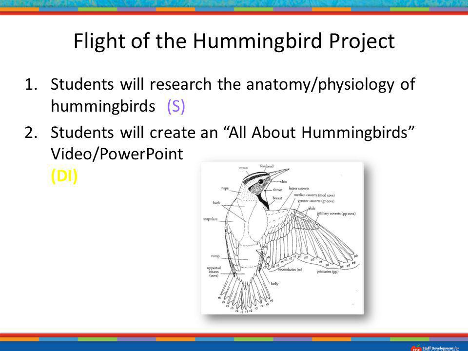 1.Students will research the anatomy/physiology of hummingbirds. (S) 2.Students will create an All About Hummingbirds Video/PowerPoint or Podcast usin