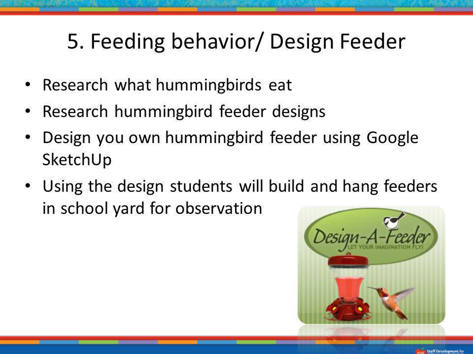 Research what hummingbirds eat Research hummingbird feeder designs Design you own hummingbird feeder using Google SketchUp Using the design students w