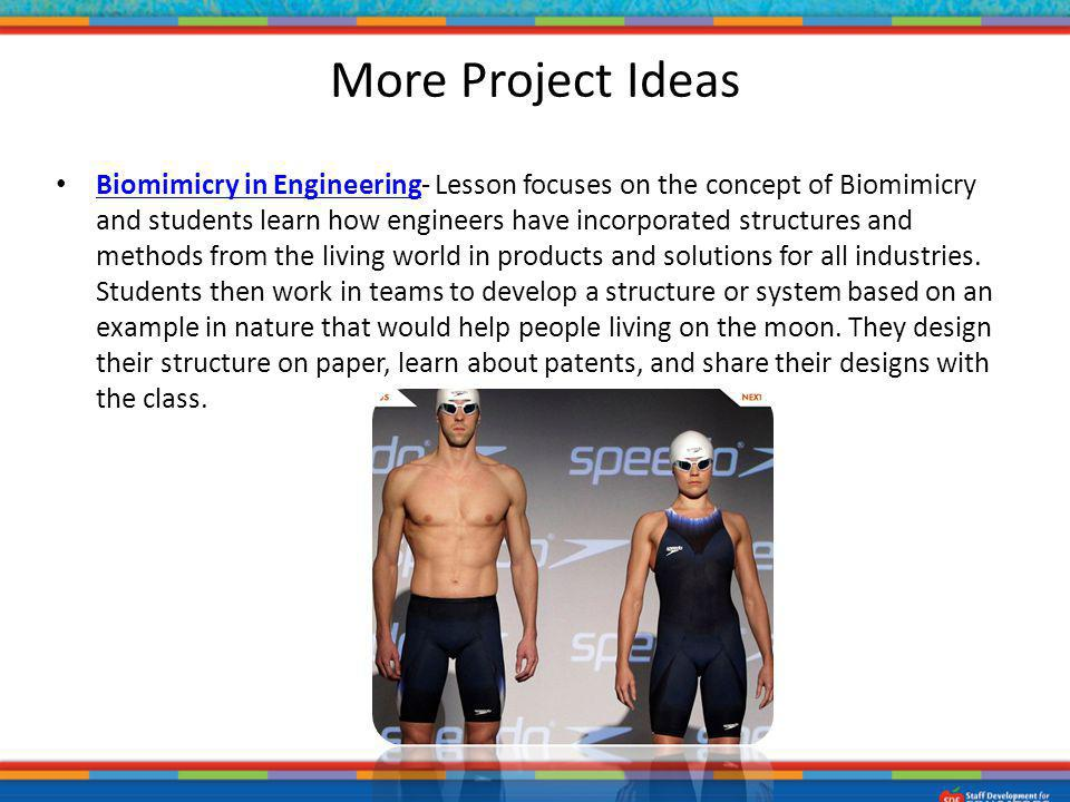 Biomimicry in Engineering- Lesson focuses on the concept of Biomimicry and students learn how engineers have incorporated structures and methods from
